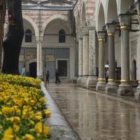 Istanbul Twilight (Part III)